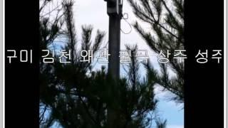 김천 염소축사 CCTV설치공사