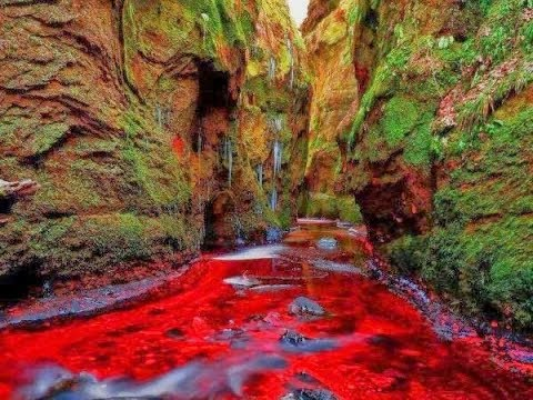 finnich glen blood river scotland
