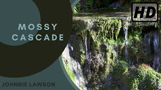 Nature Sounds Relaxing Dripping Waterfall Forest Sound Of Birdsong Relaxation Meditation Mindfulness