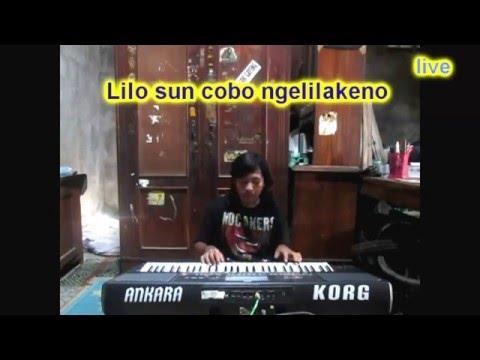 kelangan Karaoke Korg keyboard Pa 600 900 volca