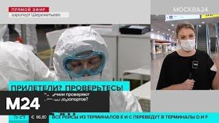 Какие меры защиты от коронавируса используют сотрудники Шереметьево - Москва 24