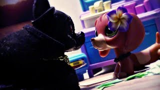 Littlest Pet Shop: ♰Kissing Sin♰ (Episode #18 Birthday)