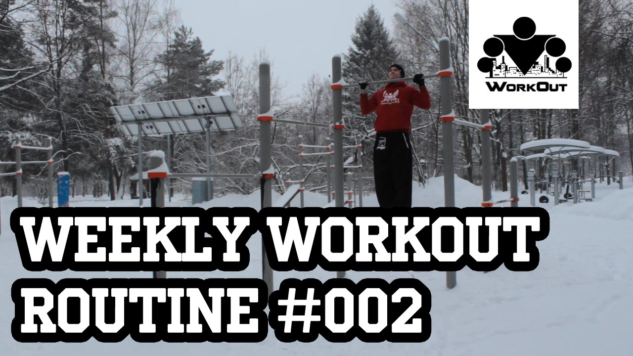 Weekly Workout Routine #002 - Beginner - Back-Biceps (from MadBarz com)