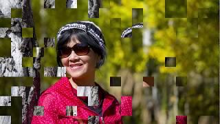 Nhạc phẩm Xin Cho Tôi - Ca sĩ Thiền Vị