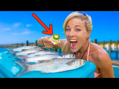 MULLET (Catch Clean Cook) The Results Will SHOCK YOU! Smoked Mullet HOW TO