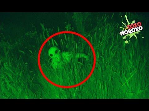 Aliens Reales que Fueron Captados en Video | Top DeToxoMoroxo