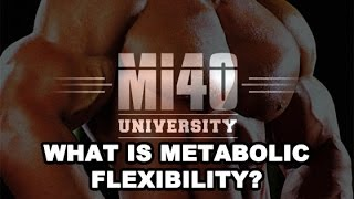 Muscle Building, Metabolic Flexibility Effect on Insulin Sensitivity