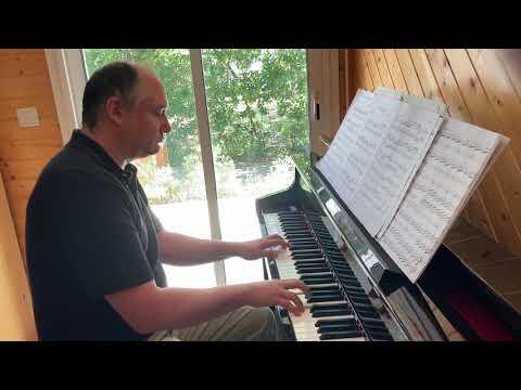 JS Bach Variation Goldberg N°2 on a Casio-Bechstein GP 500 - Florian Damour - piano