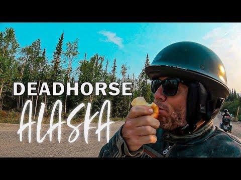 80 MILES TO DEAD HORSE MOST EPIC HARLEY MOTOVLOG EVER !