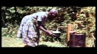 Documentary: Wangari Muta Maathai (1940 - 2011)