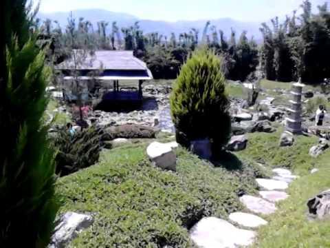 Jardin japones jardines de mexico morelos mexico for Bordillos de hormigon para jardin