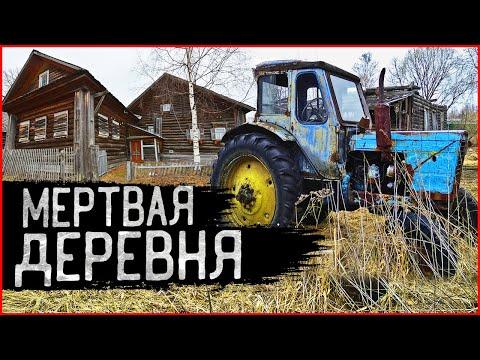 Заброшенные Деревни: кладбище автомобилей стоит в глуши 30 лет! КАК живет российская глубинка?