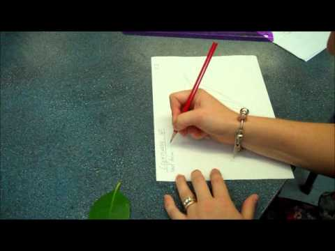 Biological Drawings Tutorial Youtube