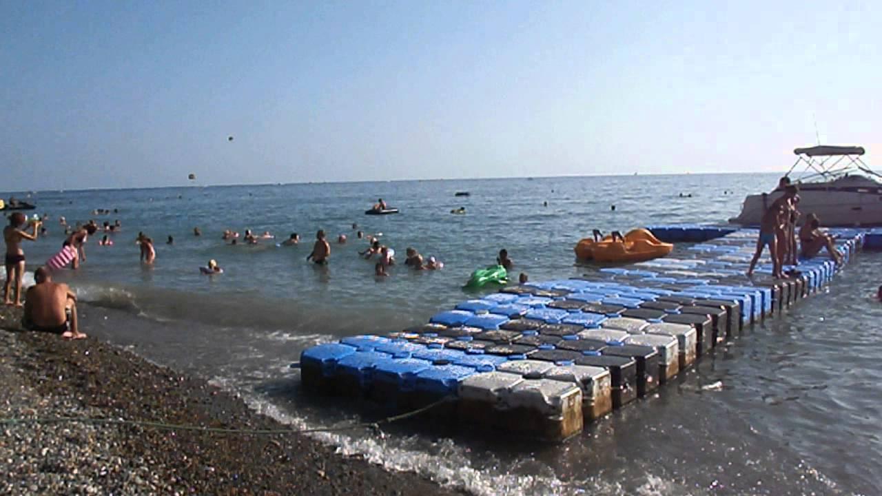 пляж лазаревское дельфин фото