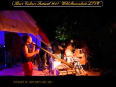Wild Marmalade live @ Heart Culture 2013 - Austria