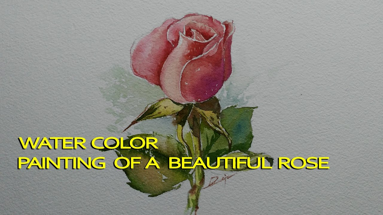 How to paint a beautiful rose bud in water colors youtube how to paint a beautiful rose bud in water colors dhlflorist Image collections