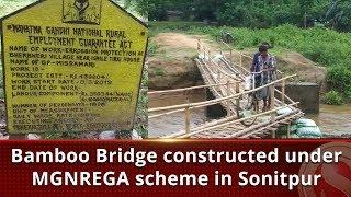 Bamboo Bridge constructed under MGNREGA scheme in Sonitpur    The Sentinel News   Assam News