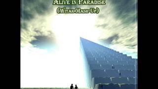 Tiesto & Dyro vs Krewella Alive in Paradise (Witak Mash Up)