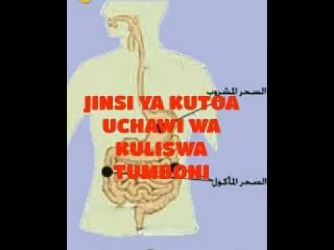 Download NAMNA YA KUUTOA UCHAWI WA KULISHWA TUMBONI; BY USTADH SHANI ABDALLAH MASJID ANSWAR LIKONI VANGA ESTA