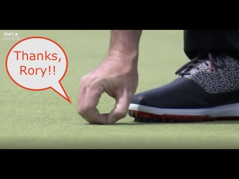 rory-mcilroy-saves-bug's-life,-drains-putt-at-the-2019-pga-championship