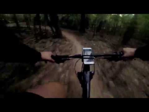 River Bend Mountain Bike Trail in Sugar land - Bush