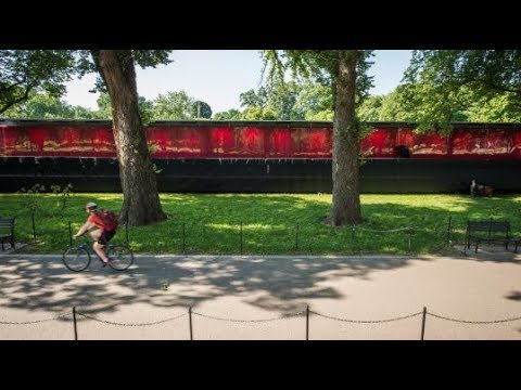Wall of 645,000 poppies honors Americans killed in war