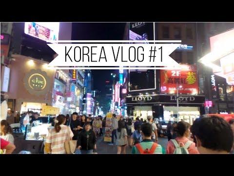 Gyeongbokgung, Hello Kitty Cafe & Starting at Hanyang Univ.!   KOREA VLOG #1
