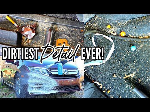 Complete Disaster Interior & Exterior Car Detailing Transformation! Dirtiest Car Detailing Ep. 17