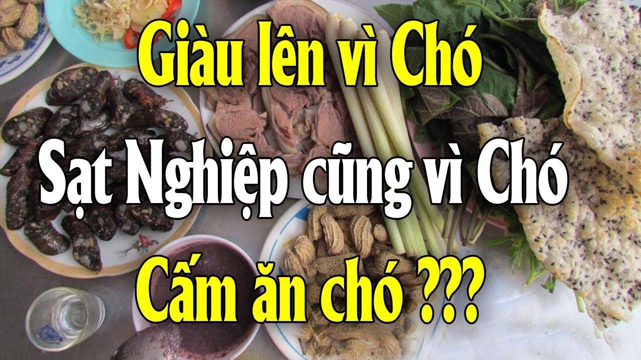 Sự thật chấn động về việc ăn T.h.ị.t chó tại Việt Nam 2021 và cái kết | Tài chính 24H
