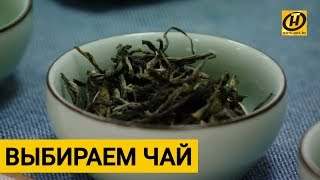 Выбираем КАЧЕСТВЕННЫЙ зелёный чай. Простые советы при покупке