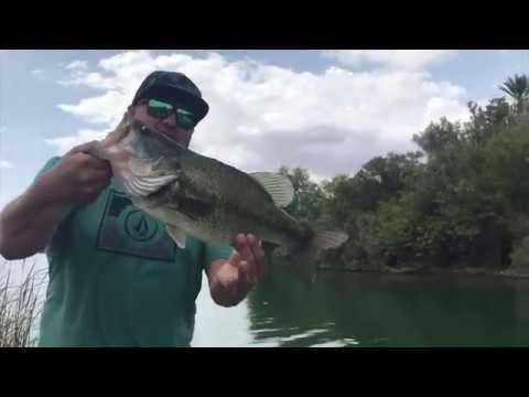 Lake Havasu Bass Fishing May 2018 Youtube