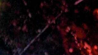 Children of Bodom, April 13th, 2009!