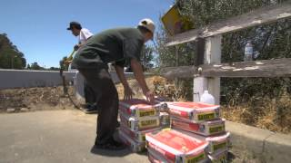 The Build Project : 510 Skate Shop streaming