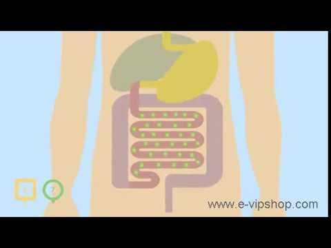 Синбиотики (симбиотики) Vision.Синбиотики для кишечника