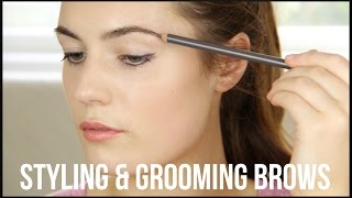 Styling & Grooming Brows Thumbnail