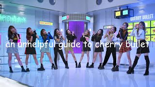 an (un)helpful guide to cherry bullet