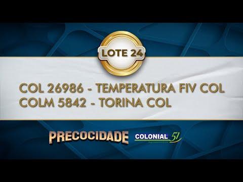 LOTE 24   COL 26986, COLM 5842