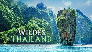 Wildes Thailand - Trailer [HD] Deutsch / German