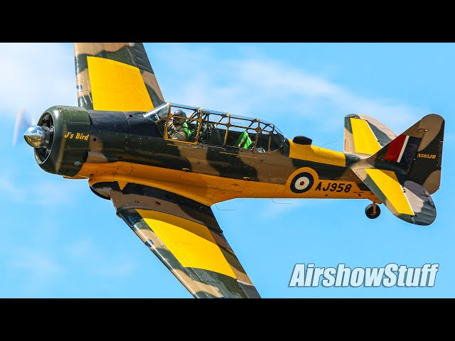 T-6 Texan/Harvard Aerobatics - Black Flag 2020