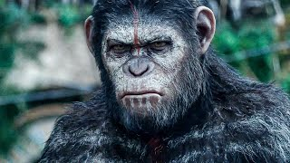 Baixar Apes Don't Want War! Scene - DAWN OF THE PLANET OF THE APES (2014) Movie Clip
