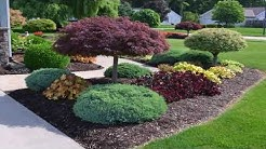Landscape Design Zone 9