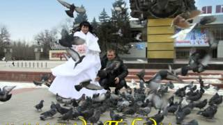Магия свадьбы нашего города.  г. Волгодонск