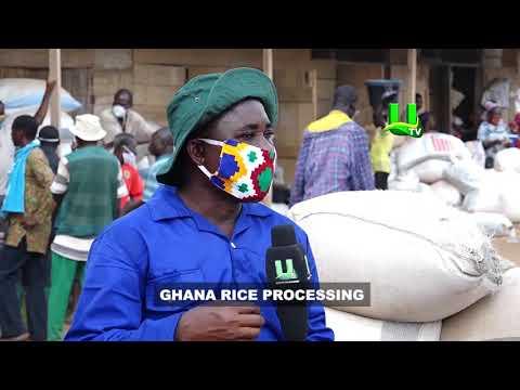 AYEKOO: Rice Processing in Ghana