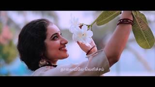 airaa-megathoodham-song-meera-sandeep-caspian-wedding