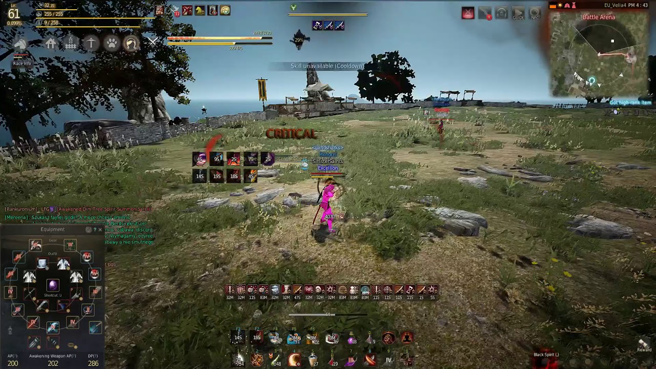 Black Desert - Why I run Accuracy? | Excellion's thoughts on different Musa  builds
