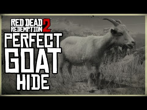 HOW TO GET A PERFECT GOAT HIDE - RED DEAD REDEMPTION 2 PRISTINE ALPINE GOAT HUNT