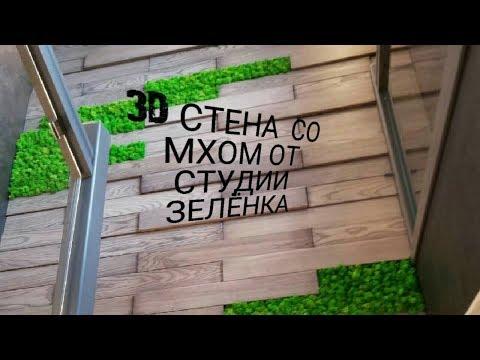 3D стена из дерева со мхом от Студии Зелёнка(Zelenka Show 21)