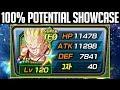 100% TEQ SSJ GT Vegeta Showcase [Dragon Ball Z Dokkan Battle]