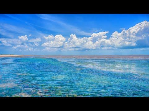 Blues Music - Voice Of My Heart - Irving Garnier