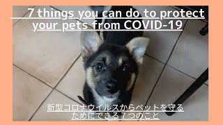 7 things you can do to protect your pets from COVID-19/新型コロナウイルスから自分のペットを守るためにできる7つのこと